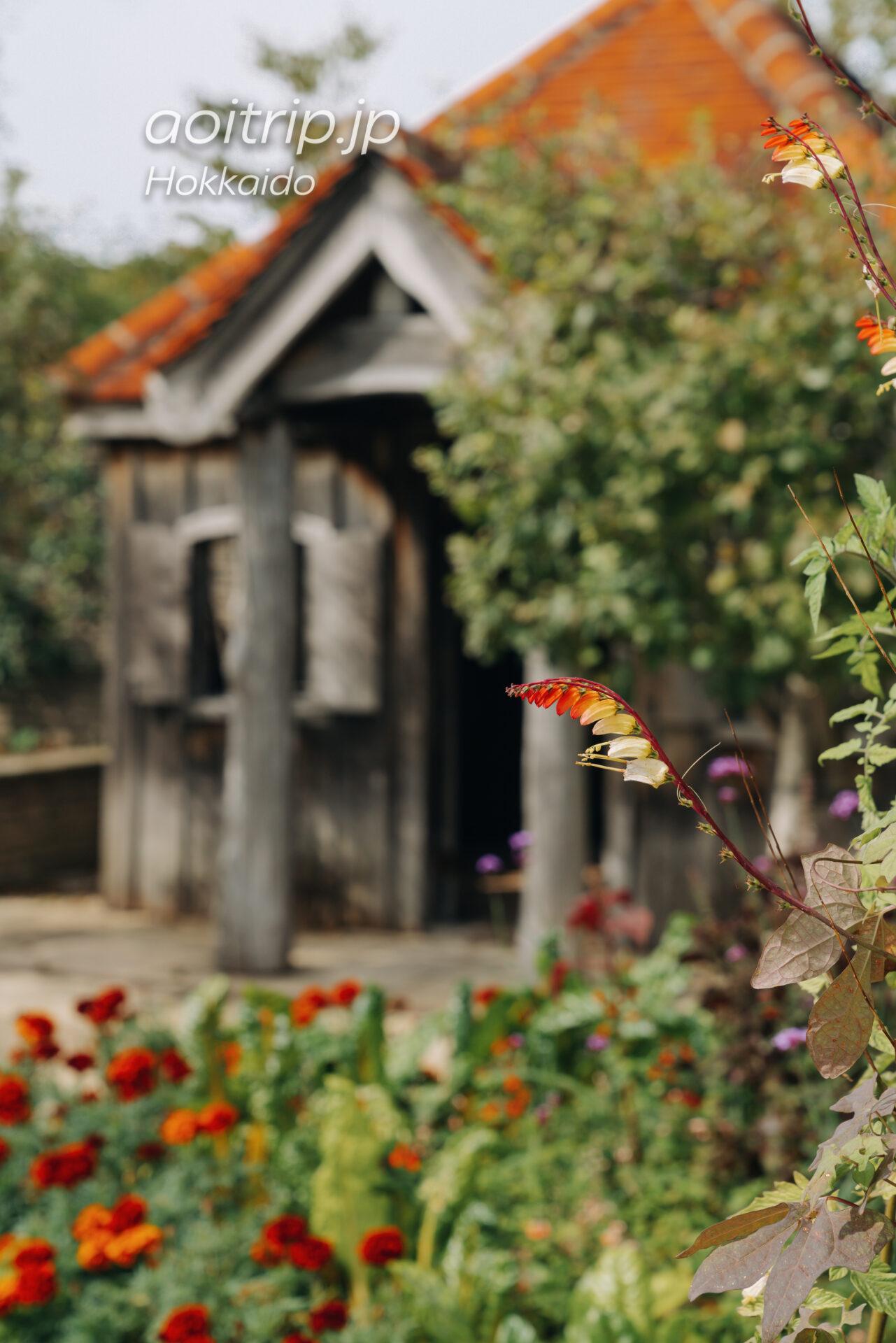 えこりん村 Ecorin Village 銀河庭園のポタジェ