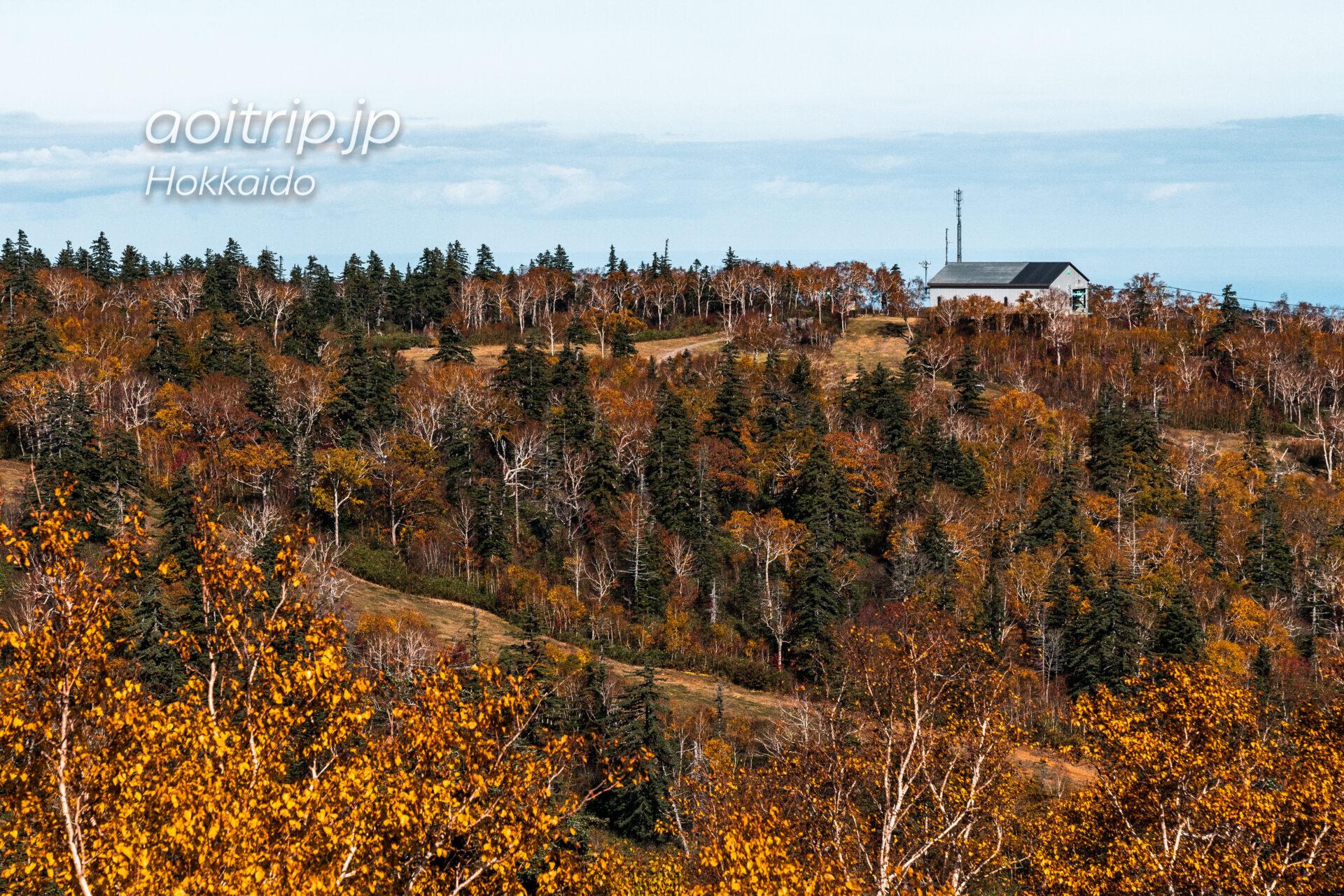 札幌国際スキー場の紅葉 Sapporo Kokusai Ski Resort